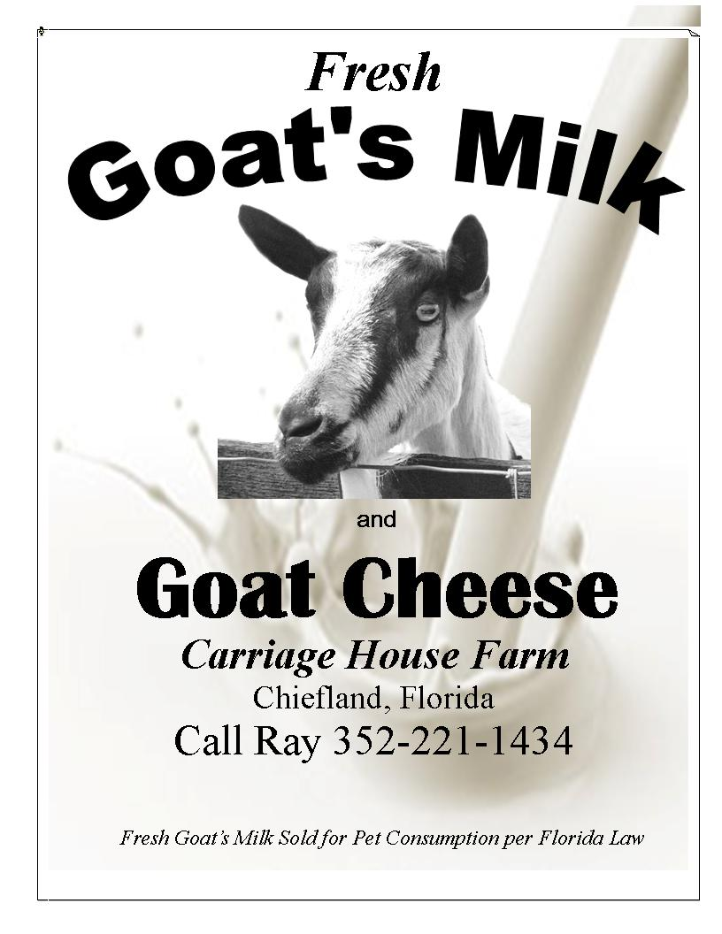 Goats Milk & Cheese For Sale